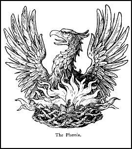 Image result for phoenix bird alchemy