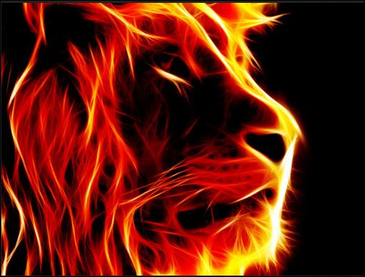 lion flame 3